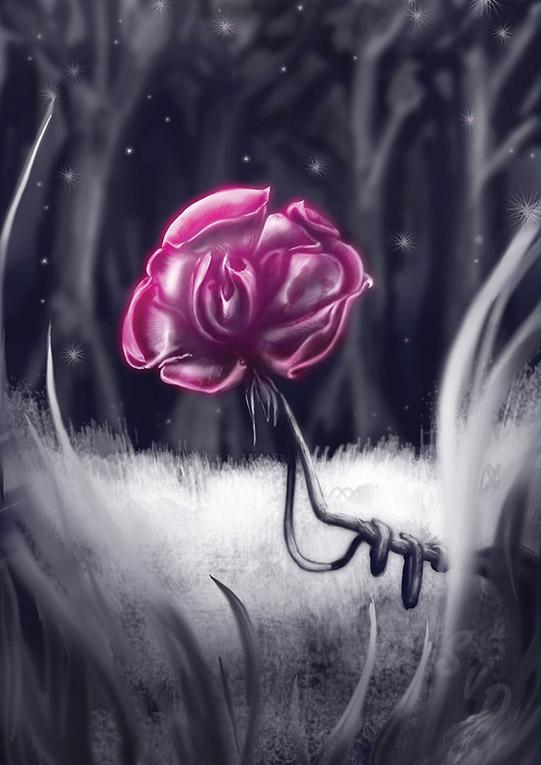 ShamVanDamnArt -Evening Rose